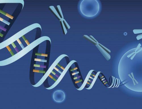 Formes graves de COVID-19 : une composante génétique et immunologique.